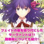 フェイトの桜を依り代にしたサーヴァントは?!間桐桜についても紹介!